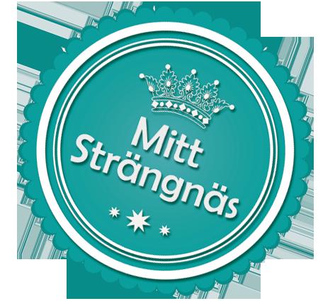 Medaljong_Mitt_Strangnas_Sned