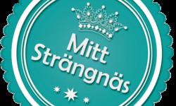 cropped-Medaljong_Mitt_Strangnas_Sned.png