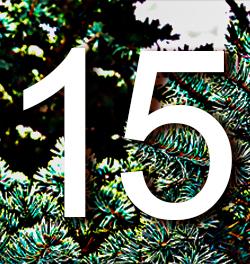kalender15